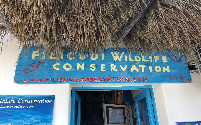 Filicudi Wildlife Conservation