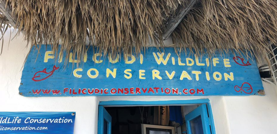 Filicudi Wildlife Conservation
